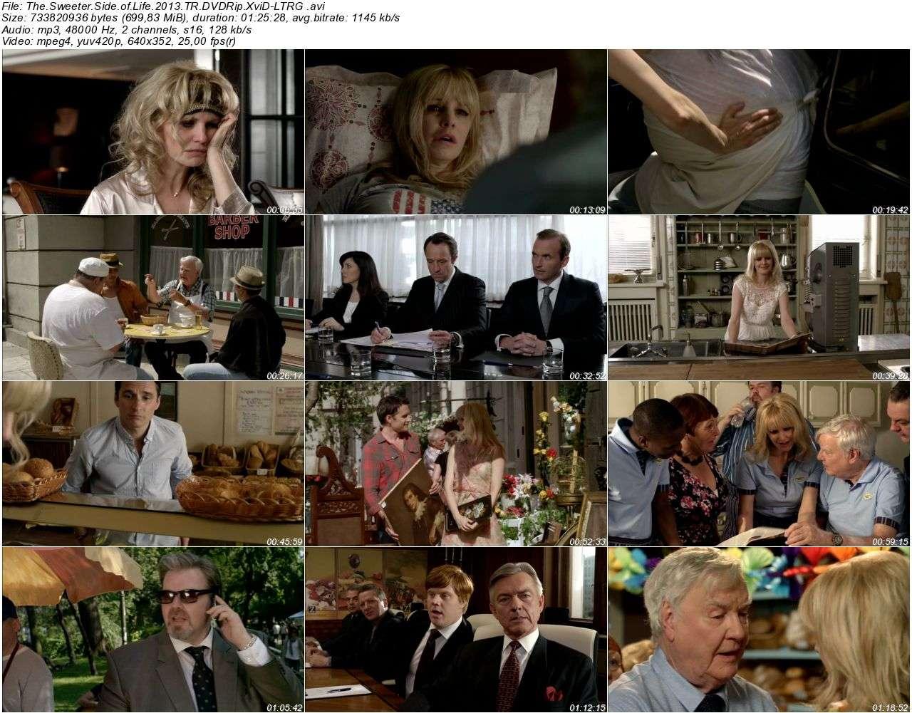 Hayatın Tadı Tuzu - 2013 DVDRip XviD - Türkçe Dublaj Tek Link indir